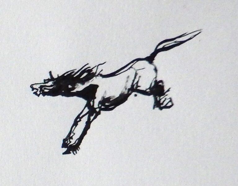 Wild Paardje 2017 inkt